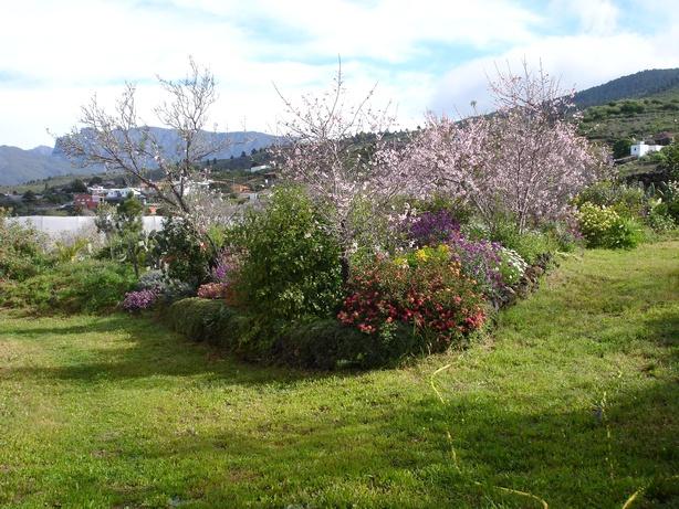 Garten 018