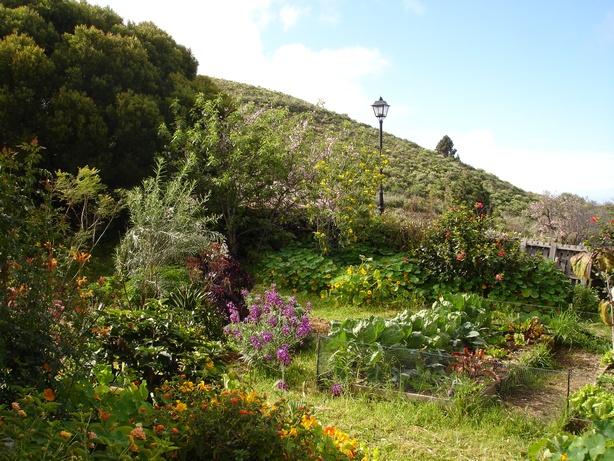 Garten 020