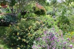 Garten 013